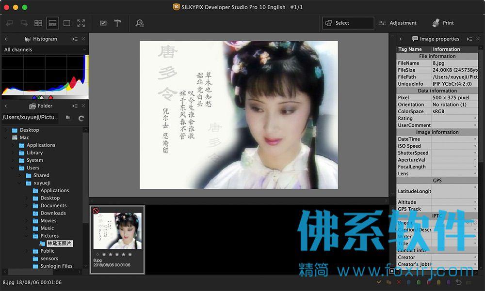 专业的RAW图片处理软件SILKYPIX Developer Studio Pro 10E 英文破解版