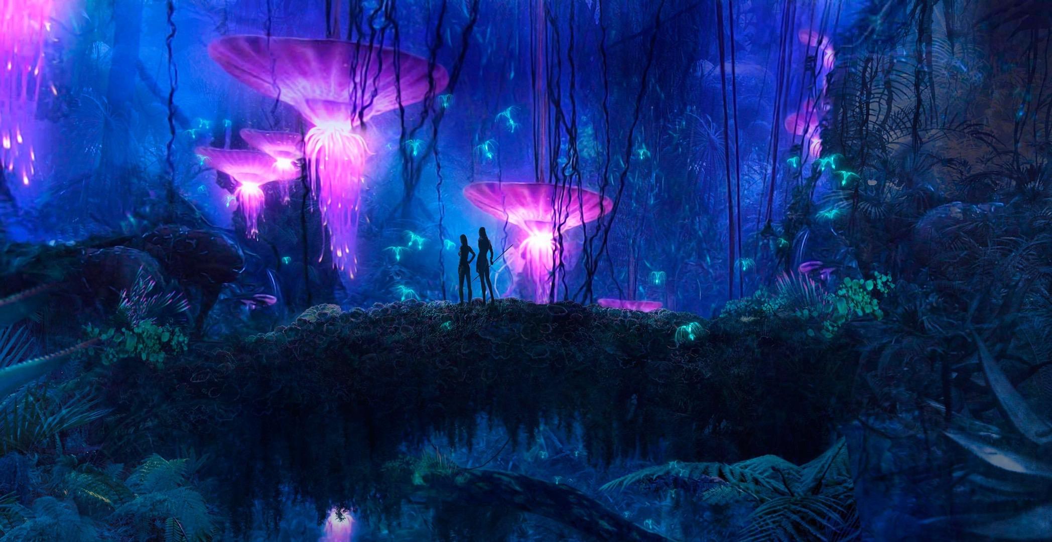 阿凡达:挑战感官与内心极限的 IMAX 神话