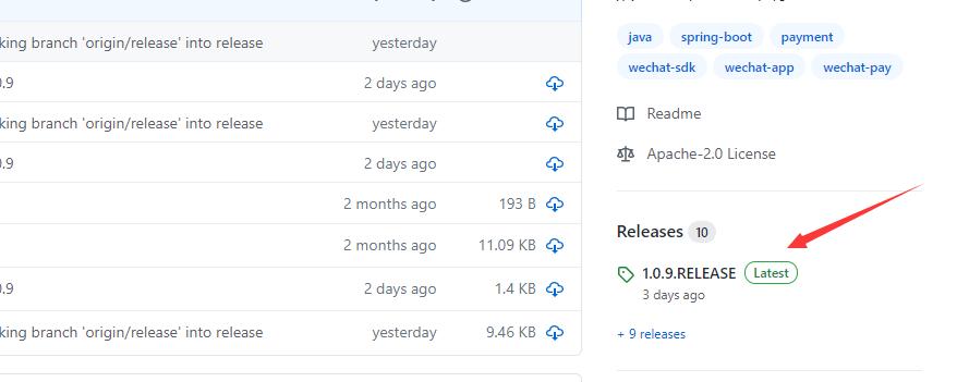 Github中的Release发行版