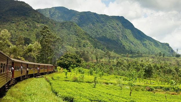 南亚新的肾上腺素之都——斯里兰卡|国外旅游 5