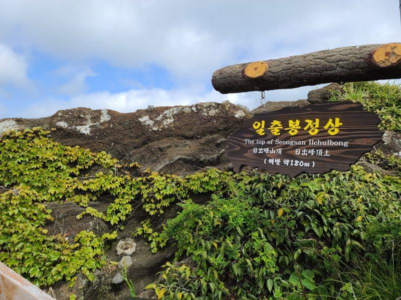 2021济州岛旅游必去五大热门景点|国外旅游 4