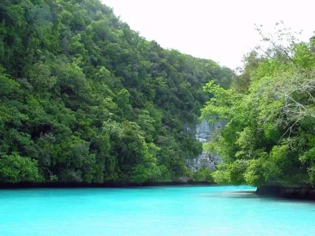 比马尔代夫更接近天堂的岛屿,帕劳!|国外旅游 11
