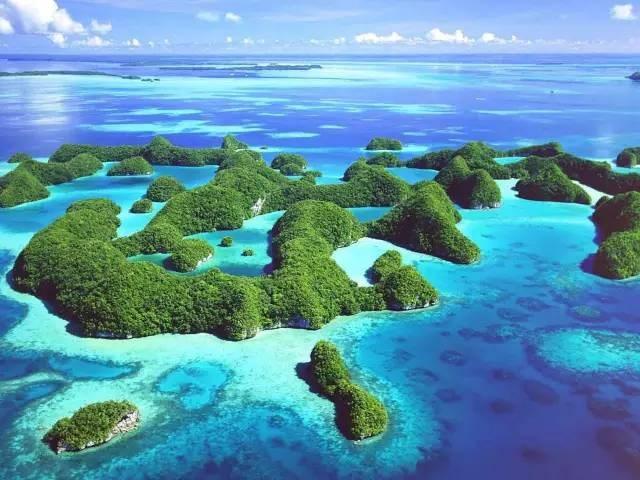 比马尔代夫更接近天堂的岛屿,帕劳!|国外旅游 14