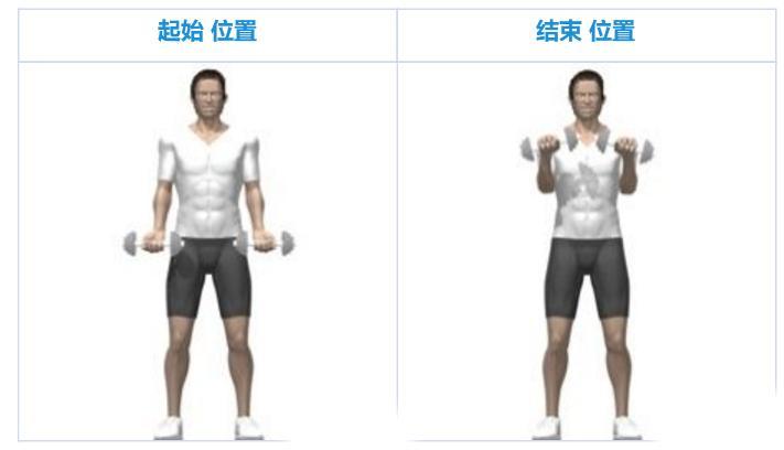 翻腕弯举-追梦健身网