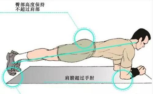 平板支撑还能够这么玩 这6个行动变式能够尝试-追梦健身网