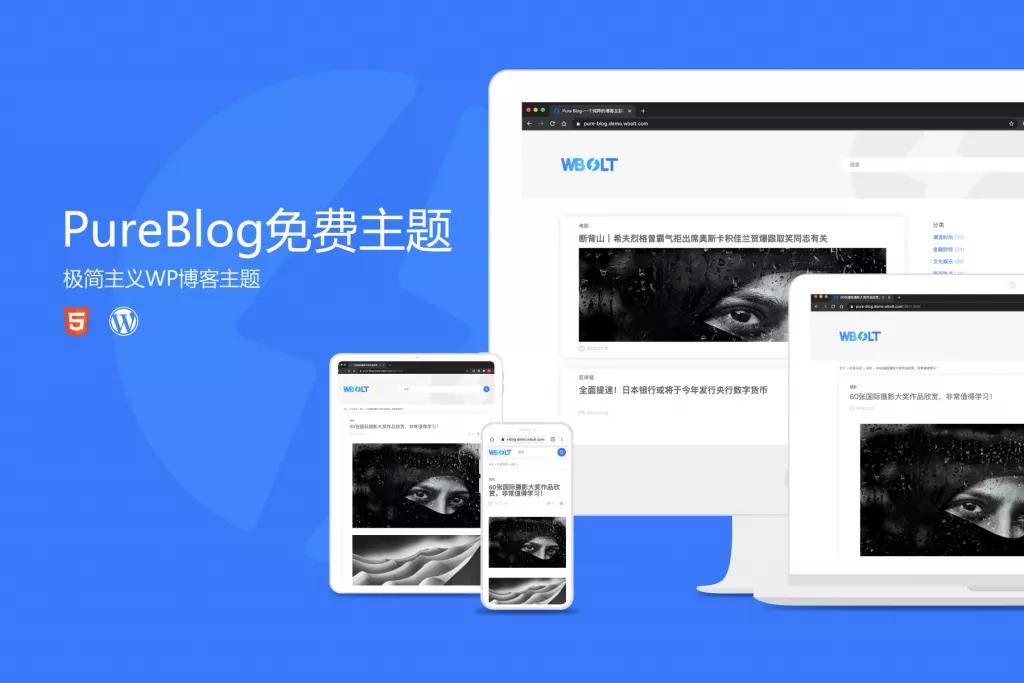Pure Blog主题:一款极简的免费WordPress博客主题下载插图1