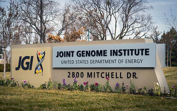 JGI Phytozome 批量下载的几种方法