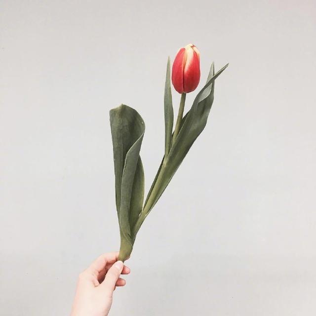 关于七夕情人节的祝福语,句句简短浪漫,赶快送给她吧!-幽兰花香