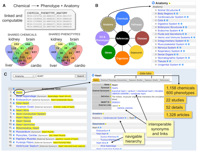 CTD毒理基因组学