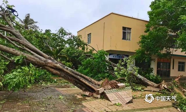 """近5年来影响海南最强台风""""圆规""""来袭 组图告诉你海南的风有多大-幽兰花香"""